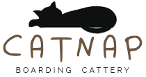 catnap boarding cattery